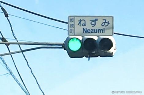 1_3nezumi