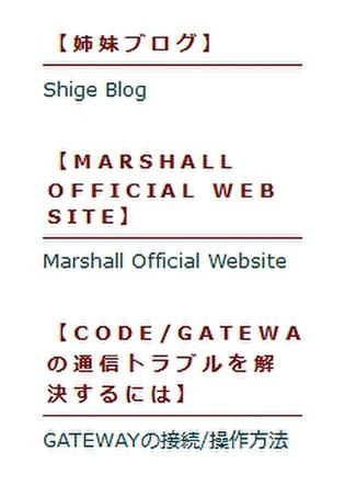11_codegate